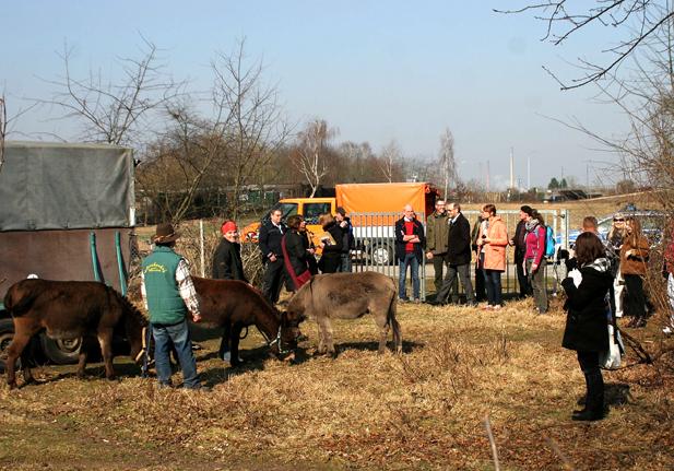 Empfang der neuen Herde im März 2015